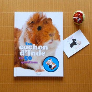 Livre Ton Cochon D 39 Inde En 50 Questions Ditions Milan