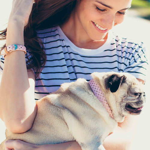 "Collier + Bracelet ""PUPPY LOVE"" - FRIENDSHIPCOLLAR"