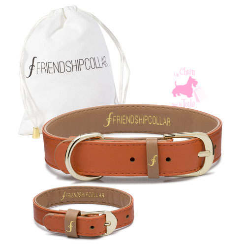 "Collier + Bracelet ""THE CLASSIC PUP"" - Arancia - FRIENDSHIPCOLLAR"
