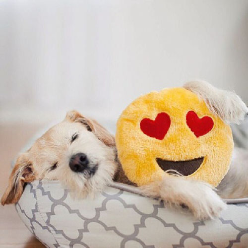 "Peluche EMOJIZ ""Heart Eyes"" - ZIPPY PAWS"