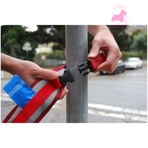 "Laisse ""Pick Pocket Leash"" - PAWW"