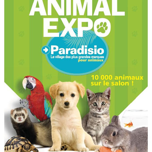 Au coeur d'Animal Expo !