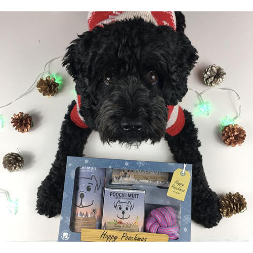 "Kit de Noël ""Happy Poochmas"" - POOCH & MUTT"