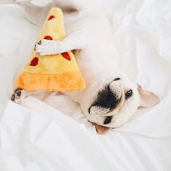 "Peluche EMOJIZ ""Pizza"" - ZIPPY PAWS"