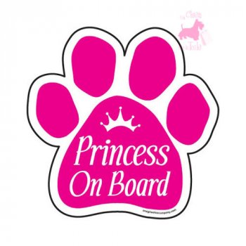 "Magnet ""Princess on Board"""
